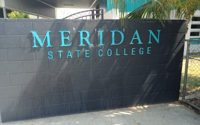 Meridan State College End Of Year Workshop Fun!